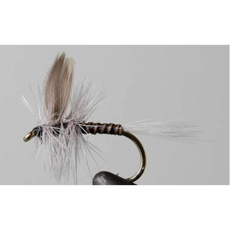 fly creek muslim personals Welcome to the reel anglers fly shop  the best fishing is above downiville up to the confluence of salmon creek dry dropper systems always work best yellow .