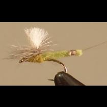 X-Body Mayfly - Olive
