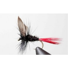 Black Gnat (Red Tail) - Singles