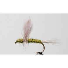 Blue Wing olive Thorax
