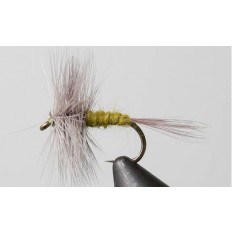 Blue Wing Olive - Single