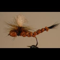 Brown Drake Paradrake