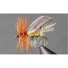 Henryville Caddis - Single