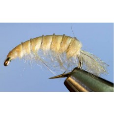 Molting Scud - Lite Cream