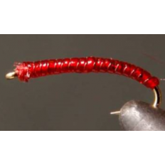 Red Rock Worm / Red Crack Worm