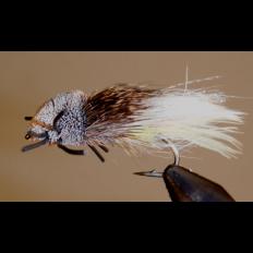 Tarantula - Yellow